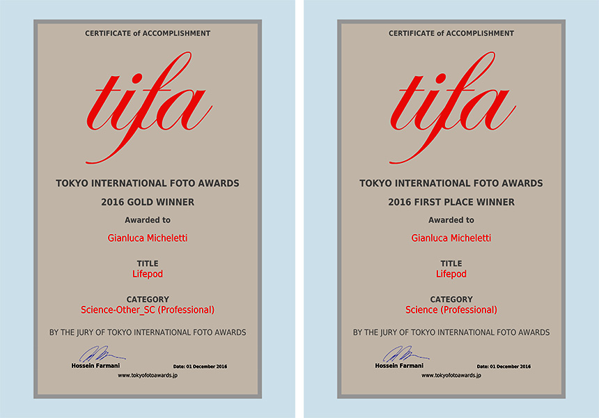 tifa awards